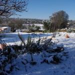 Snow at Rustic Puglia